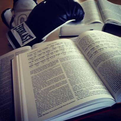 boxingtorah